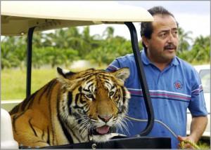 Wildlife on El Tigre