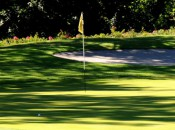 A birdie putt waits on the 8th hole of the Yellow nine at Golf Club Bergamo