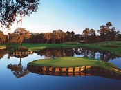 The famous 17th at the Stadium Course, TPC Sawgrass