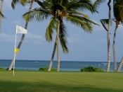 Swaying palms and tropical breezes: the 7th green at La Cana