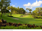 The fifth hole at Wailea Gold