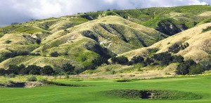 The Hilly Terrain Of Rustic Canyon Comes Quietly Into Play On Many Holes