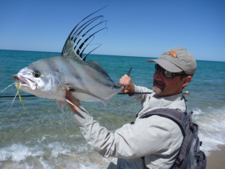 Running down roosterfish in baja california for Rooster fish cabo