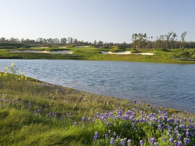 The Challenge Course at Monarch Dunes (in Nipomo, California) is ranked in the top ten of the nation's par-3 courses.  (photo courtesy of Monarch Dunes)