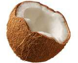 coconut1