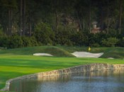 Atlanta Athletic Club's par-three 15th has created some controversy. Photo courtesy of Atlanta Athletic Club.