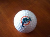 Dolphin logo ball