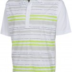 EcoSmart Distressed Stripe Polo