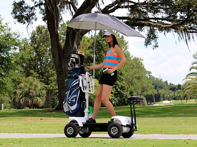 Man Cave Garage Designs as well Hello Kitty Golf Lady 10 Piece Full Set as well 5074723 furthermore Golf Ball For 90 Mph Swing Speed likewise pare Golf Balls 2015. on golf cart bag sale
