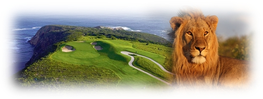 Golf and safari cover1