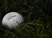 A hallowed treasure: a lost Titleist amongst the weeds.  Photo: adamentmeat, Flickr Creative Commons