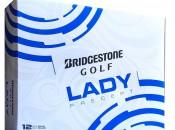 Lady Precept (2)