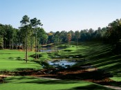 Reynolds Plantation CREEK_CLUB_12 [800x600]