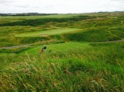 Royal Aberdeen's stark beauty stands out.