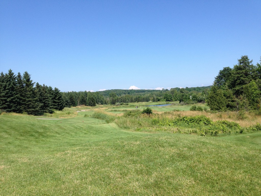 No. 5 tee at the Bear. Yes, there is a fairway and a green out there.