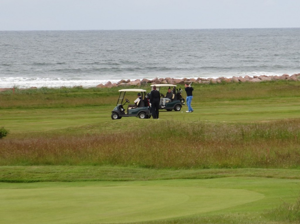 . . . Buggies (riding carts) at Nairn. Who knew?