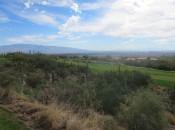 Arizona National fairways cut through Sonoran desert