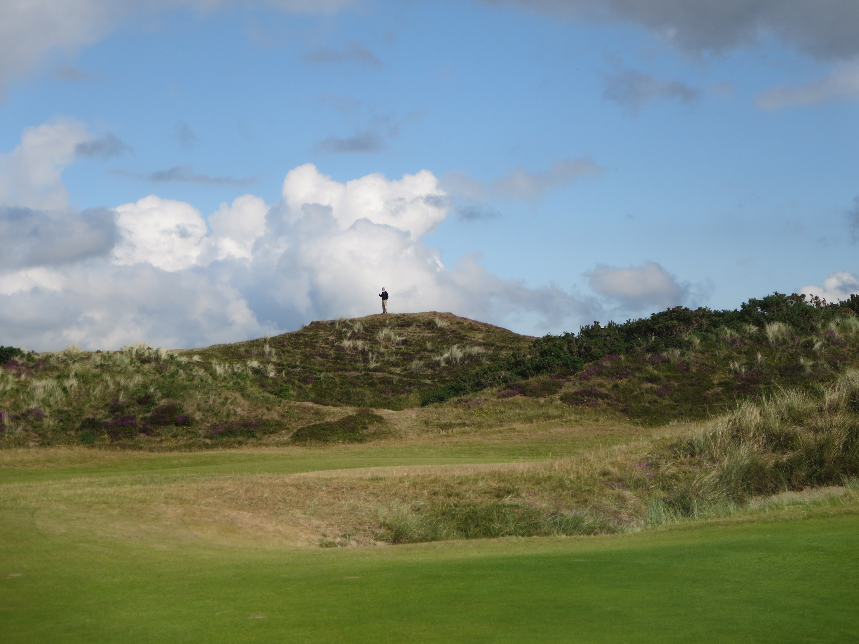 Alan Deane, a marshal at Royal County Down, stands sentinel to help golfers locate errant tee shots.