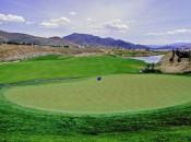 D'Andrea golf2