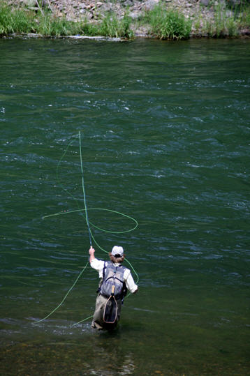 The best little fly shop in colorado for Best fly fishing in colorado