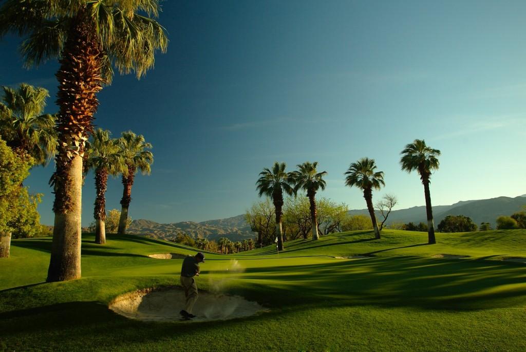 DS Golfer in Bunker 6107