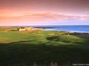 Crail-Golfing-Society-Balcomie-Links-14th-©-Linksland.com-(4)