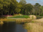 Willbrook Plantation #1 tee
