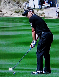 Golf Betting Guide, Golf Betting Odds, Golf Betting, Luke Donald, Disney's Palm Golf Course