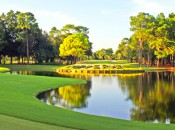 Betting, Golf Betting Guide, Golf Betting Odds, Copperhead course, Transitions Championship