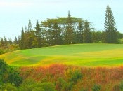 One of the stunning views on the Plantation Course at the Kapalua Resort