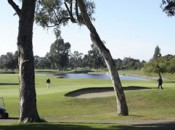 Looking back on the 5th hole of the Earl Fry Course at the Chuck Corica Golf Complex in Alameda, California.