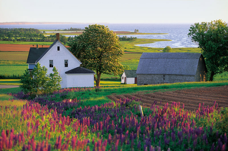 15 Great Reasons You Should Want To Visit Prince Edward