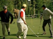bear-on-golf-course