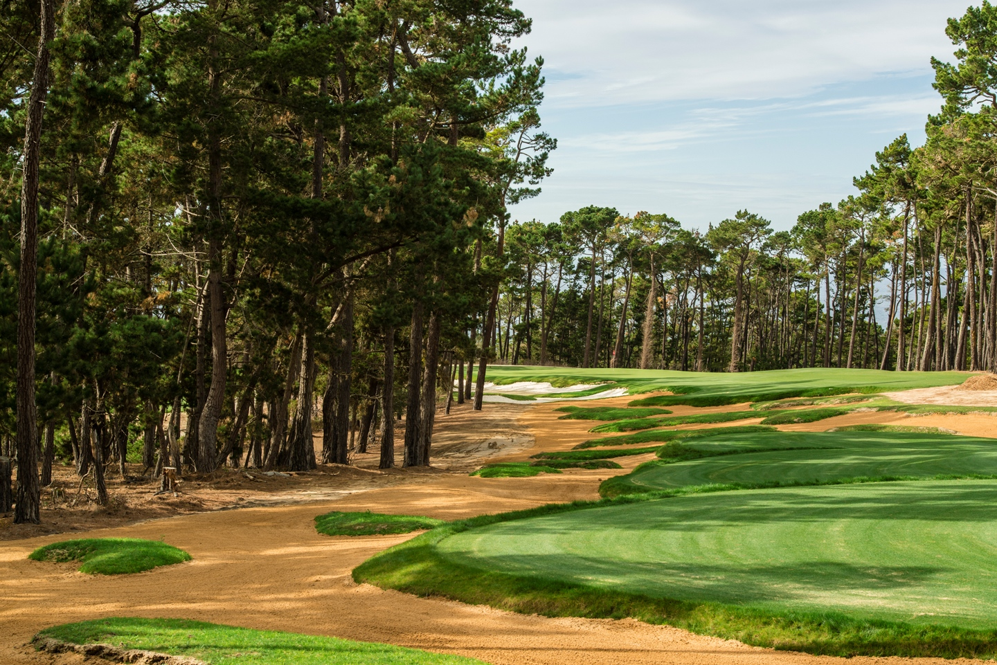 Poppy Hills 15H View From Tee