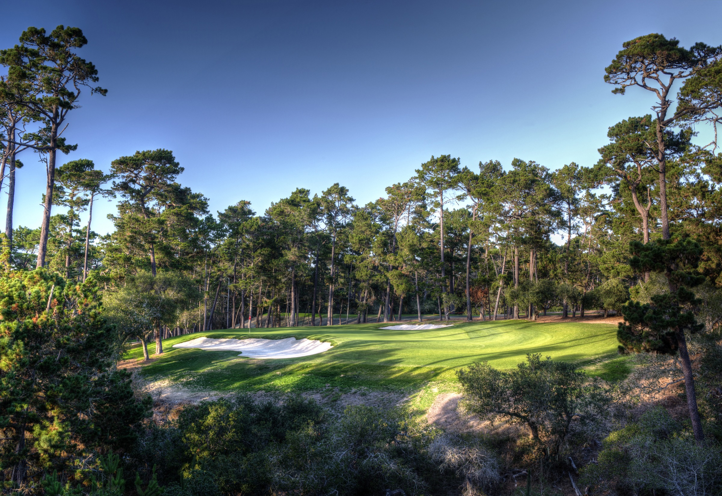 Poppy Hills 2H View From Tee