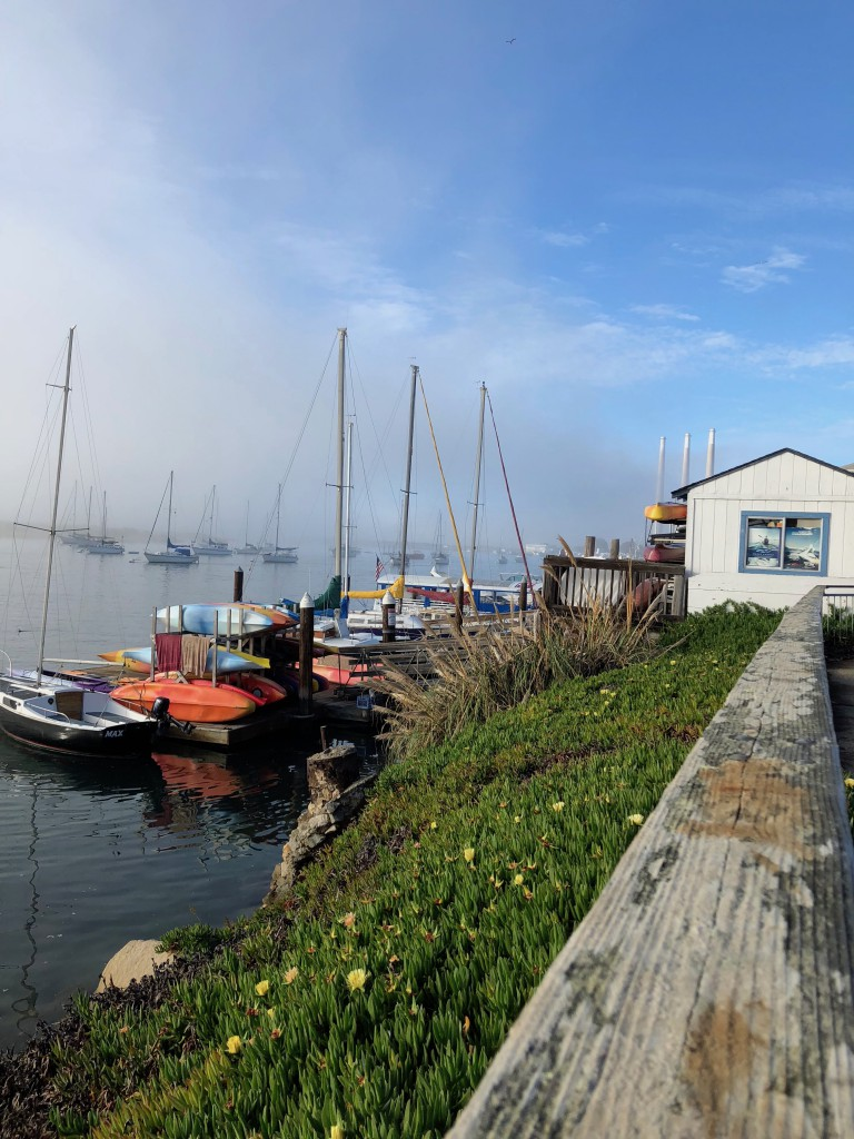 Morro Bay3
