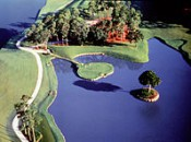 220px-TournamentPlayersClub_Sawgrass17thHole