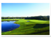 The Tom Fazio-designed Sabal course is a delight