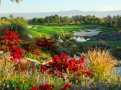 Noted for its floral beauty the Celebrity Course is a visual treat