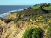 Torrey Pines North offers spectacular views