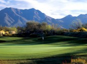 McDowell Mountain Ranch: easy on the eyes and the wallet