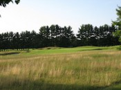 Native grasses provide a lovely contrast to verdant fairways and greens