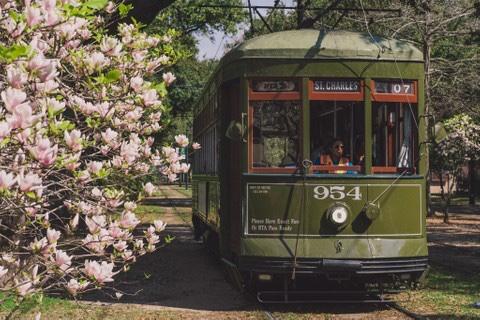 A vintage streetcar along St. Charles