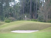 Hills' Legends Course fits nicely into the dark, wooded wetlands it intersects.