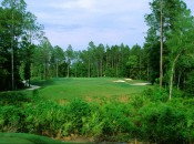 The tantalizing par-3 10th begins the most inspired stretch of holes at Fleming Island.