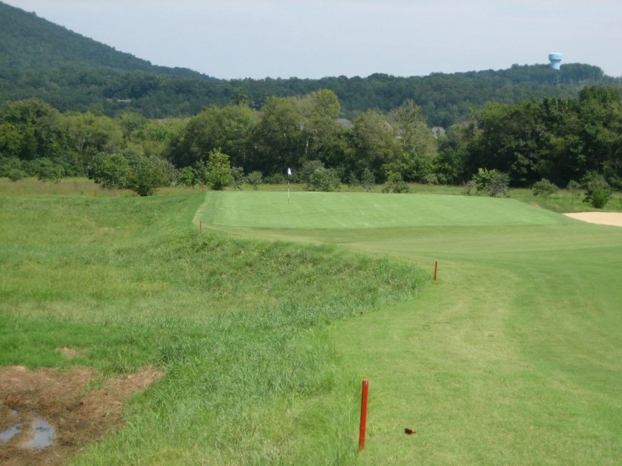 """The """"Cape"""" 15th is a short par-4 the tumbles down to a green set against a low marshy area."""