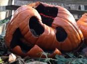 extreme pumpkin 2013