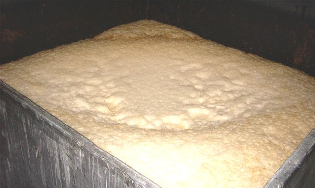 ss_yorksh_square_fermenting.jpg