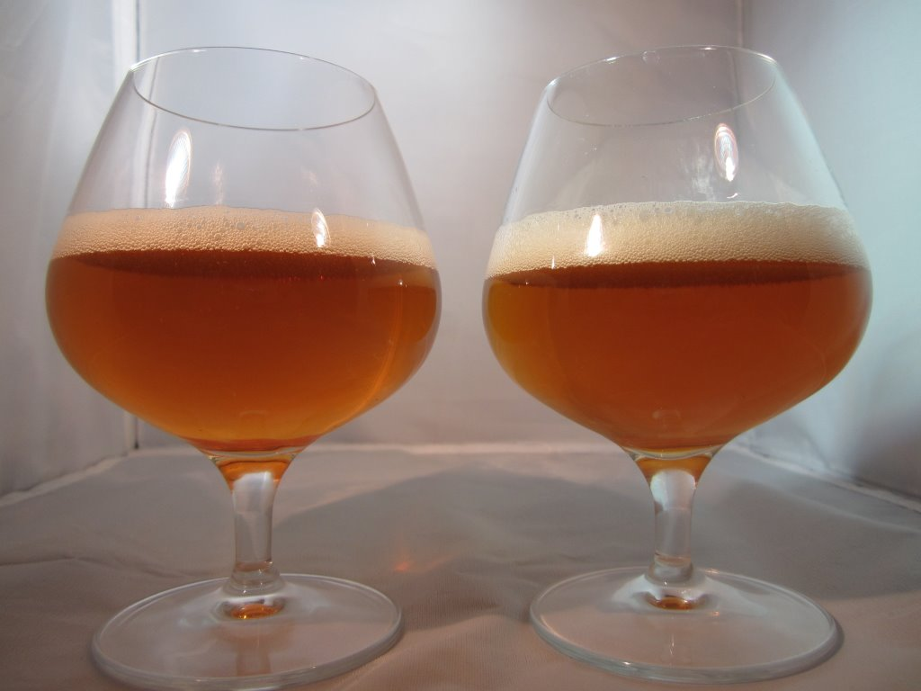 The beers look virtually identical in the glass. Sculpin IPA on the left, Point the Way right