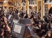 An infinite number of monkeys....